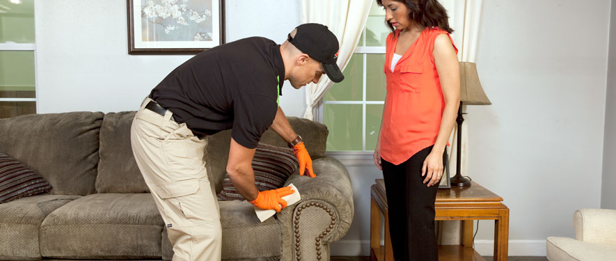 Newport Beach, CA carpet upholstery cleaning